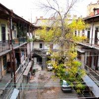 Двор и Дерево :: AV Odessa