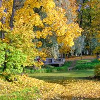 Осенняя пора :: Олег Попков