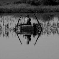 тихая охота :: Владимир Бурдин