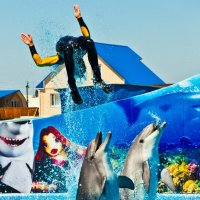дельфинарий пгт кириловка :: ВАЛЕРИАН АТОНОВИЧ