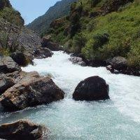 Киргизия :: Olga Rouz