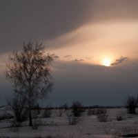 Пейзаж :: Евгений Харченко
