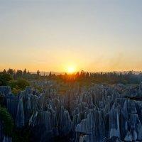 Каменный лес :: Александр Федоров