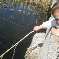 Пробы воды :: Шумми Редфорд