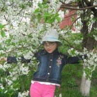Весенний свет :: Шумми Редфорд