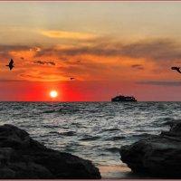 Закат на Черном море :: Виктор Марченко