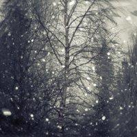 Кружит снежок :: Ирэна Мазакина
