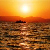 Морская прогулка :: Liudmila Baryba