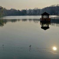 Солнце в озере... :: Ахмат Б.