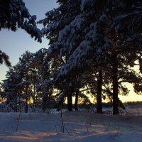 волшебство зимы :: Андрей Иванов