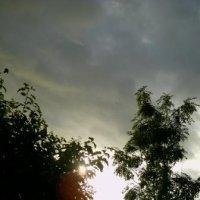 Летнее небо :: Екатерина Леонова