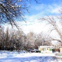 Осенняя зима. :: Елена Смирнова