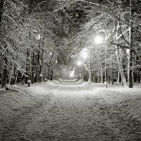 Зимний парк :: Артур Белоножко