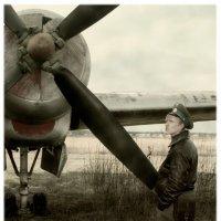 Евгения Водолазская - Больше не полетим
