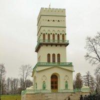 Белая башня :: Олег Попков