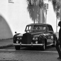 black & white 3 :: Александр Беляков