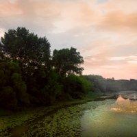 река Каспля :: Galina G