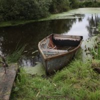 Старая лодка. :: Вячеслав Дзюбенко