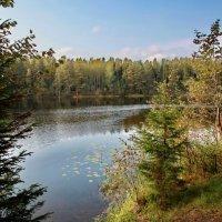 Озеро Боровенец. :: Вячеслав Дзюбенко
