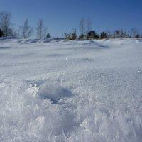 Про зиму :: Олеся Селиванова