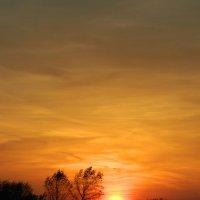 Утомлённое солнце :: Lina Liber