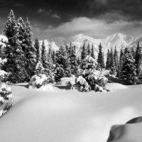 Март в горах Заилийского Алатау :: Николай Радоснов