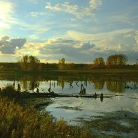 природа :: Евгений Тихонов