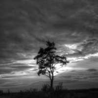 Одиночество :: Andrej Kazlou