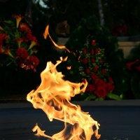 Огонь :: Наташа Белоусова