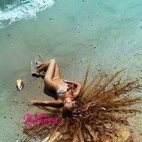 Морская звёздочка :: Алла Перькова