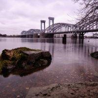 Питер. Мост :: Елизавета Вавилова