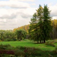Старый парк :: Олег Попков