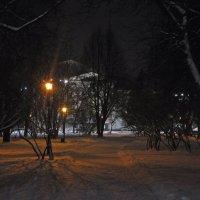 Парк ТОИБ :: Дима Кислицин