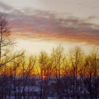 зимний закат :: Светлана Вдовина