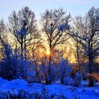 Зимний день :: Дмитрий Долгих