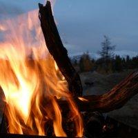 Как можно долго смотреть на огонь? :: Анастасия Куртукова