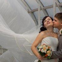 Свадебное :: Инна Зуева