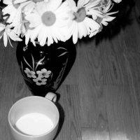 молоко :: Катя Козенкова