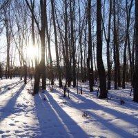зима :: Татьяна Бурухина