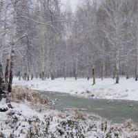 первый снег :: Татьяна Бурухина