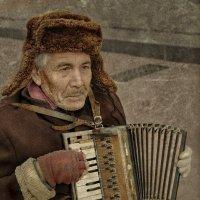Уличный музыкант. :: Ольга Герасимова