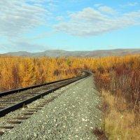 россиская железная дорога :: Руслан Аширов
