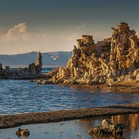Mono Lake :: Gregory Regelman