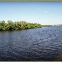 Река - Москва в Подмосковье :: Ольга Кривых