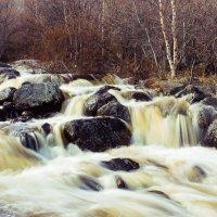 Течёт куда-то речка... :: Владимир Михадаров