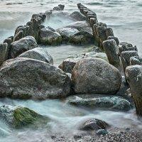Вода, дерево, камень :: Владимир Самсонов