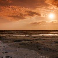 Озеро Эльтон :: Оксана Гуляева