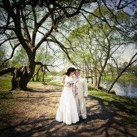 Свадьба :: Александр Кошалко