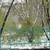 Ангарск 07.05.2014, у природы нет плохой погоды, 2 :: Галина