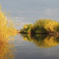 речка Каменка :: Геннадий Ячменев